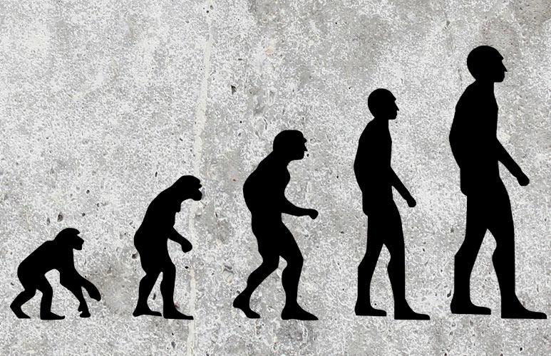 Ideas at Stratford: Darwin and After